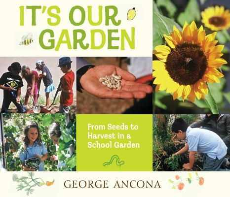 It's Our Garden By Ancona, George/ Ancona, George (ILT)