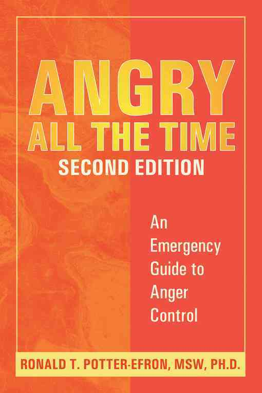 Angry All The Time By Potter-Efron, Ronald T.